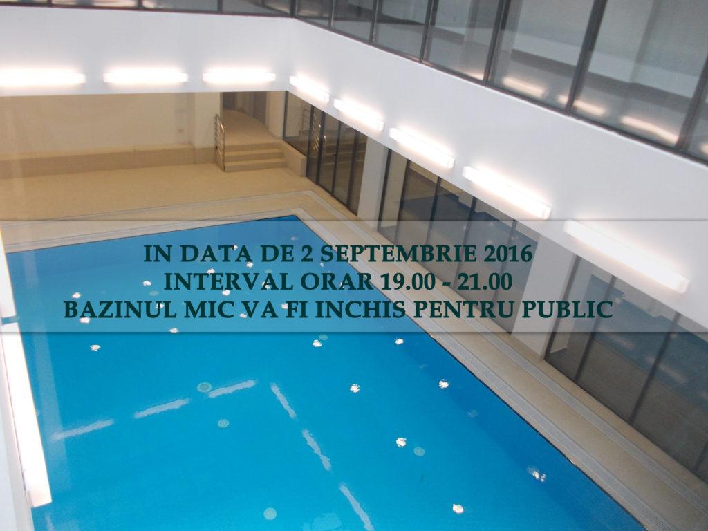 Bazinul-MIC INCHIS